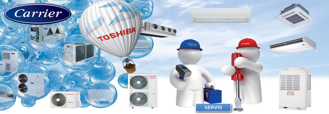 Toshiba Carrier service
